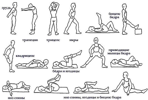 Как сделать растяжку ног