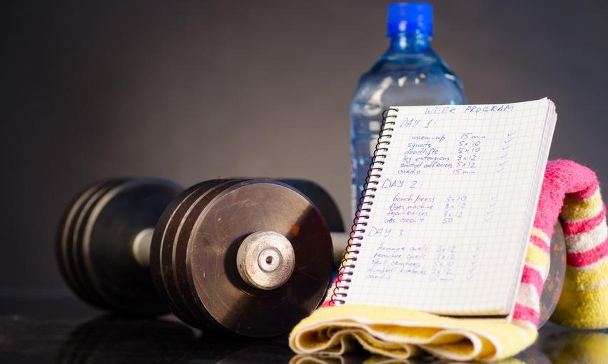 Тренировочный дневник