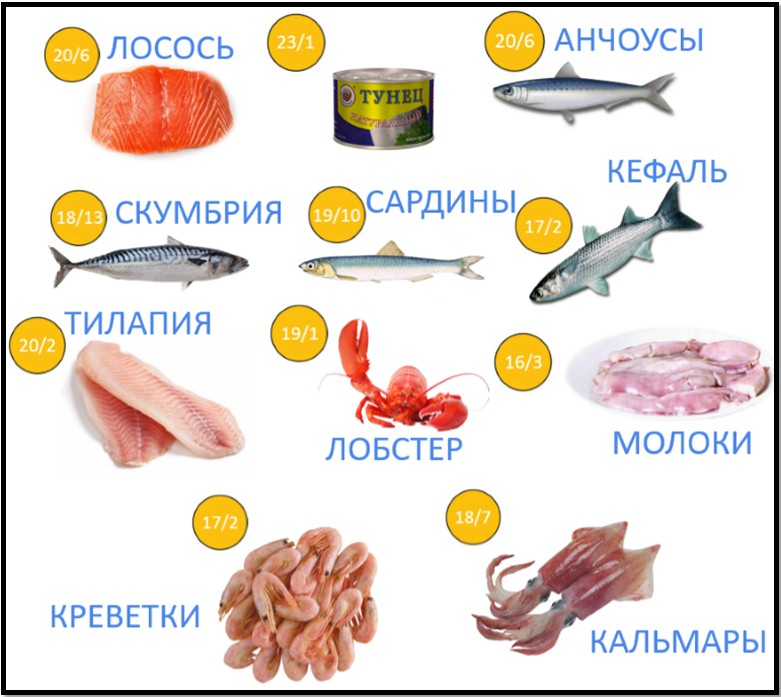 Рыба - содержание белка в 100г мяса